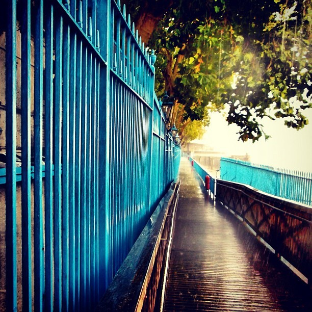 #thames #london #londonbridge #tower #toweroflondon #rain #gate #blue #pathway #tree #thatmfeeling  (Taken with Instagram)