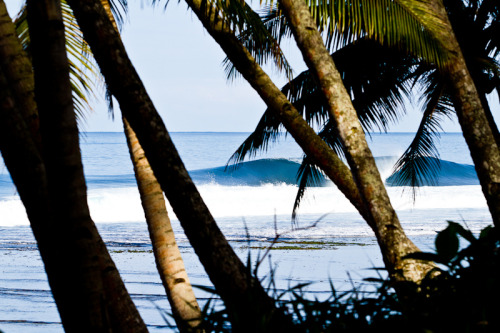 surferdude182:  Obscured Perfection (by Rob Walwyn)