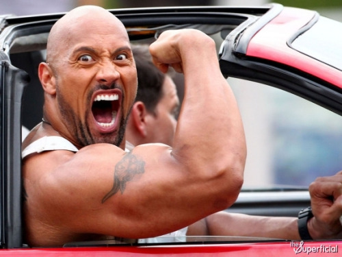 malefitspiration:  universalhustle:  DO YOU SMELL WHAT THE ROCK IS COOKING???  (via imgTumble)