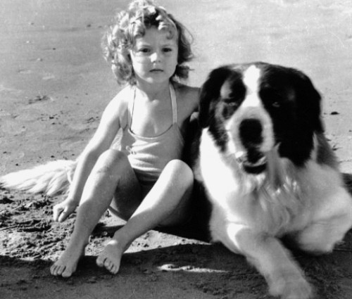 thefilmcanister:  Shirley Temple with a dog thats about twice her size.