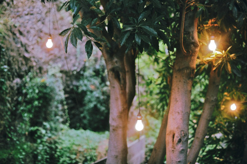 stagnants:  bright idea (by camille_teodoro)