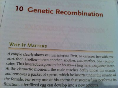 jayrockin:  fahrae:  brootalnoodles:  imgengy:  i paid $150 for this textbook   what  screams  hot