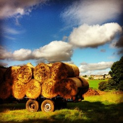 #haybails #countryside #durham #farm #sunny #summer #bluesky (Taken with Instagram at Low Newton, Durham)