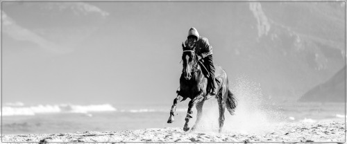 Training racehorses on the beach