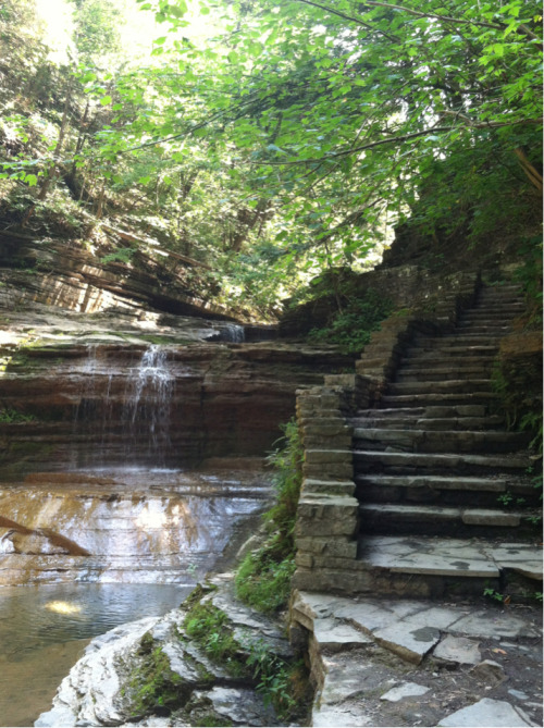 c-alyptus:  Ithaca is GORGES
