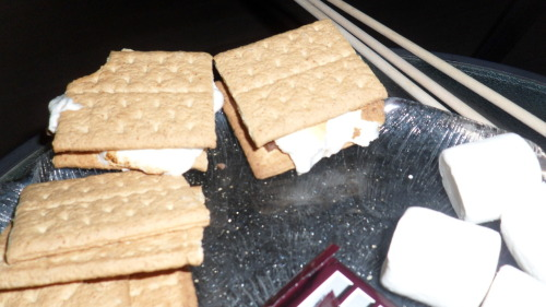 decadentdishny:  we made smores!   went up to visit Brittany and we made smores!