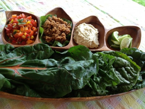 (Click here for recipe Raw Taco Night!)