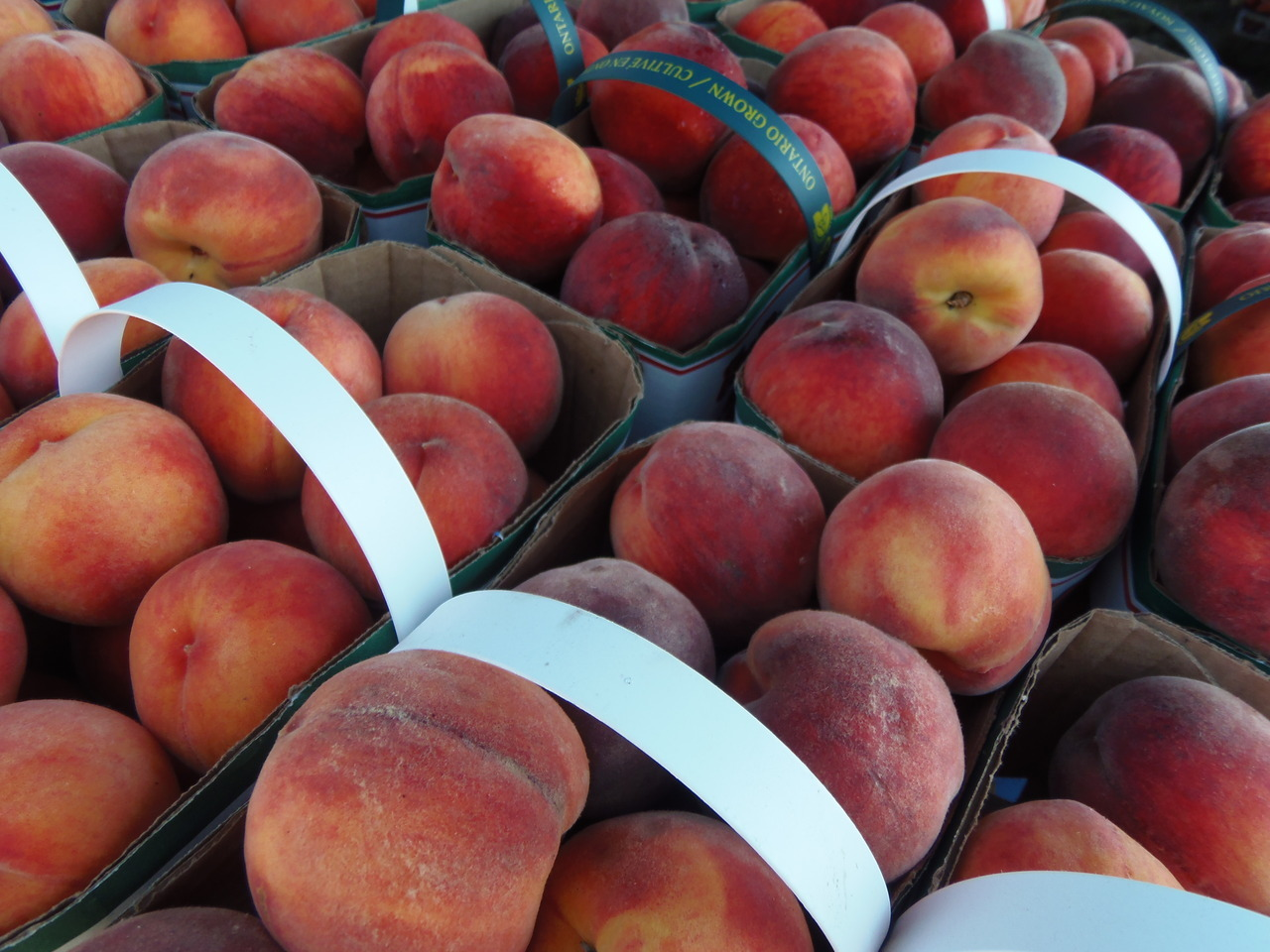 peaches at the Winona Peach Festival 2012!