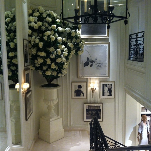 habituallychic:  The stairway in @ralphlauren ladies mansion always impresses! (Taken with Instagram)