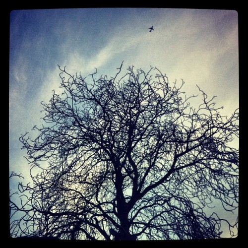 Aeroplane (Taken with Instagram)