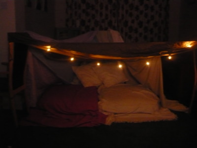 Me and my brother made this blanket fort, then watched Batman Begins in it, but ended up falling asleep instead!