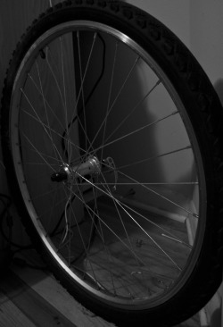 Photo XXX: Bike Wheel