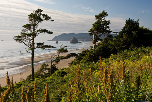 evysinspirations:  Cannon Beach by Richard Fenster on Flickr.