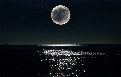 latenightflight:  Moonlight on the water. Probably one of the most beautiful things ever looked upon.