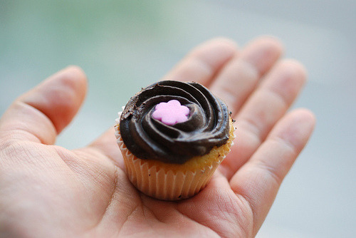 cupcakemania-:  Tiny Cupcake with Chocolate Frosting and Pink Flower Sprinkle