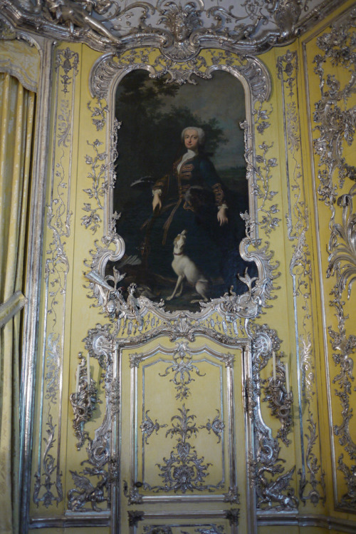 a-l-ancien-regime:  Portrait with hound Amalienburg. Schloss Nymphenburg, Munich