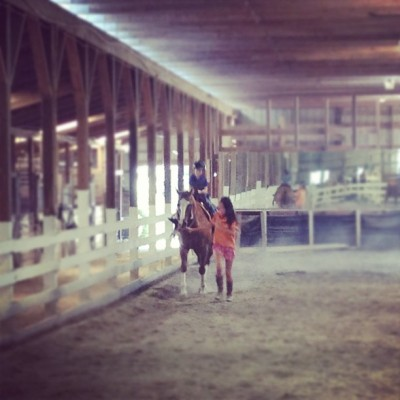 Liam trotting #barn #12oaks #trot #horse #ride #riding #horsebackriding #barnlife (Taken with Instagram)