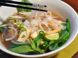 food-gazmic:  Vegetarian Pho Noodles