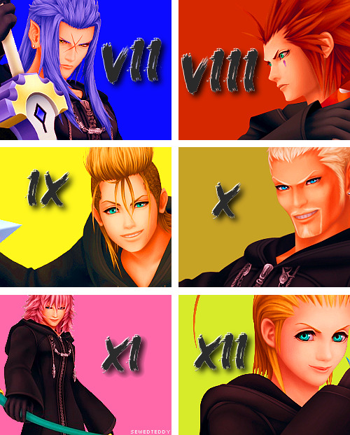 The Organization Minus Roxas&Xion