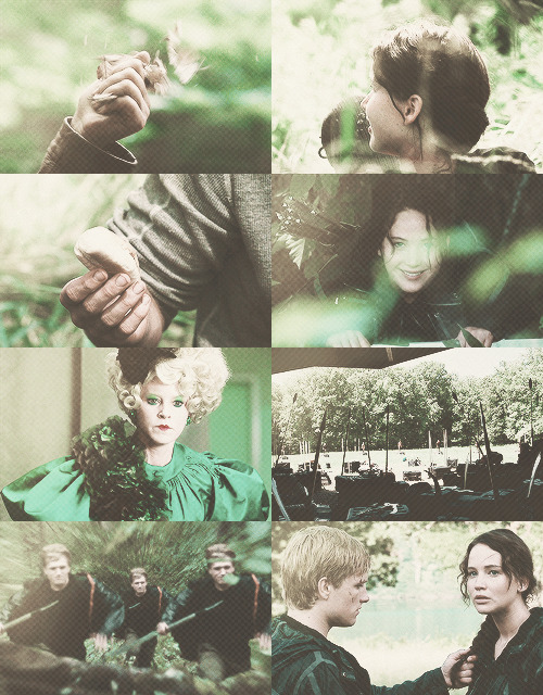 The Hunger Games Meme:one colour: green
