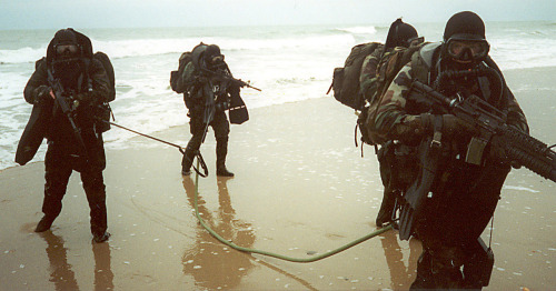 raptorjuan:  water assault, Navy SEALs