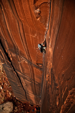 climberclimbing:  Steph Davis, Indian Creek