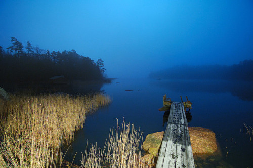 D2X_0080 Want to swim? by Vilhelm Sjostrom on Flickr.