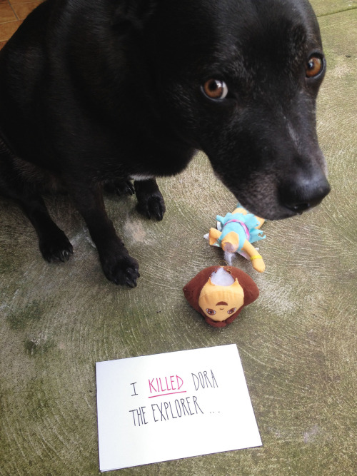 dogshaming:  all the children will be so disappointed…  You've seen this amazing Dog Shaming Tumblr, right? Hurry up and get on that if you haven't.