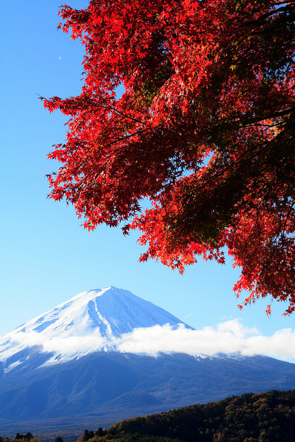 japanlove:  Mt. Fuji. by skyseeker on Flickr.