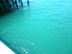 such a pretty color! ocean by the santa monica pier!