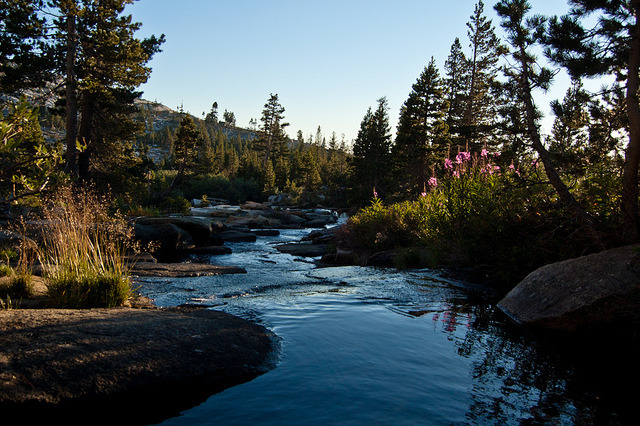 Headwaters . South Fork Silver Creek by twoGiraffe on Flickr.