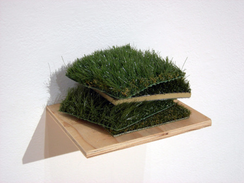 "evannesbit:  Keep Off, 3"" x 3"" x 3'"", Acrylic, turf, wood and foam. 2009  This is hilarious!"
