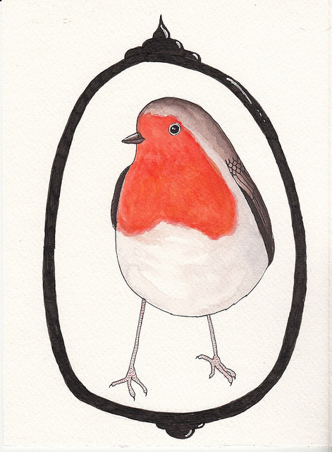robin.jpg by doozywhoop on Flickr.