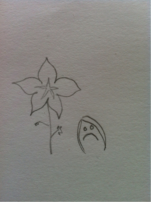 Here is a fairly accurate reconstruction of my flower drawing. Too ashamed to post the real drawing, the fact that it was a serious attempt makes it painful to look at.