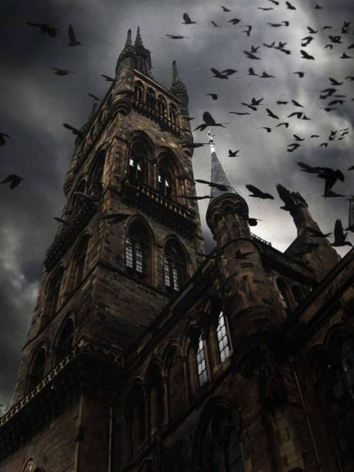 Raven Spires in Glasgow. Does this remind you of a certain Hitchcock film?