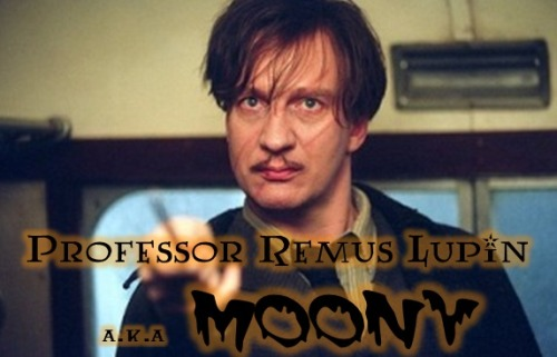 Harry Potter 30 Day Challenge: Day 6 - Favorite Professor So my first thought would be to pick Snape cause he's my favorite character. But I can't pick Snape for everything.  So I picked REMUS LUPIN ! GOO MMMMMOOOOONNNYYY