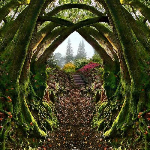 Entrance to the Secret Garden, Portland, Oregon , by architect41