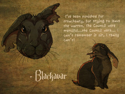 A quick character sheet like thing about Blackavar.