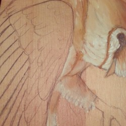kirahperle:  Sweet barn owl in progress.. <3