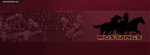 Midwestern State University Facebook Covers