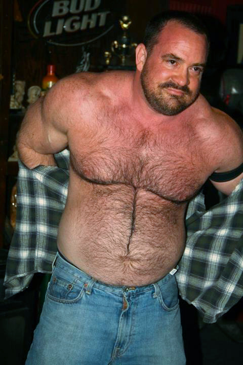 superbears:  WANT BELLY CHEST AND DOWN THERE Hot man  If this is a Bud Lite ad, is the best of them all!