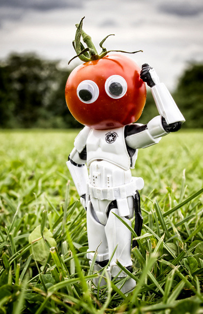 "You say tomato… by Digger Digger Dogstar on Flickr.A través de Flickr: OOglie eyed tomato created by Wilson for August's MSH clue ""Tomato Red"""
