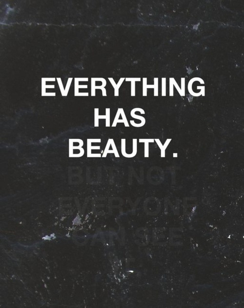 "infinitives:  ""Everything has beauty. But not everyone can see."" Jose Carlos Torres"
