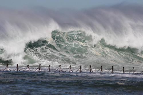 """Large waves at Newcastle Beach, New South Wales"""