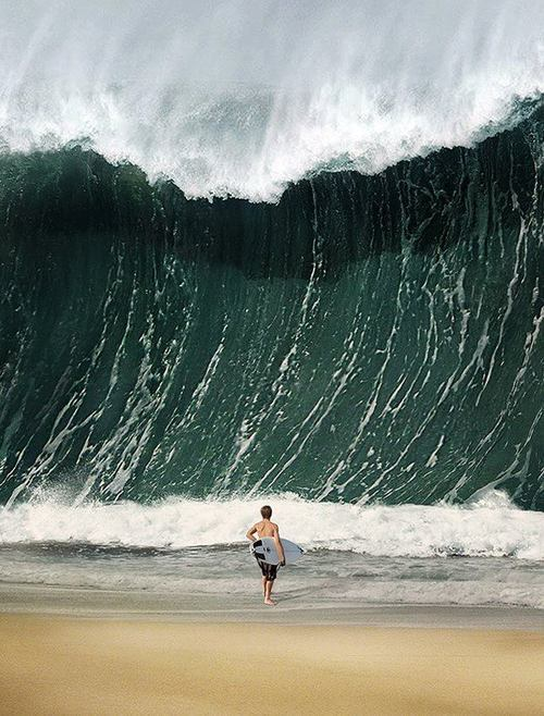 officialsurfblog:  7sunriseoversea:  the-chill-philosophy:  the-rip-current:  holy moly  AND IT'S SHOREBREAK TOO  id poop my pants  cause it's real and all..