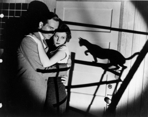 Universal's The Black Cat (1934) David Manners and Julie Bishop as Peter and Joan Alison  David Manners also played Jonathan Harker in Dracula (1931) and Frank Whemple in The Mummy (1932)