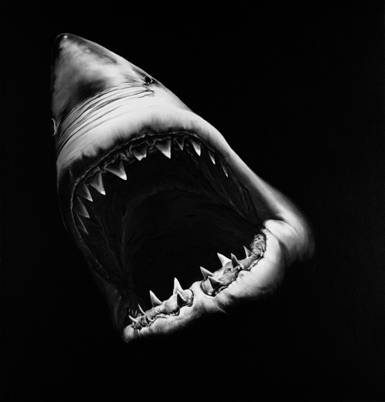 "fabulouslyfreespirited:  ""Shark"" by Robert Longo"