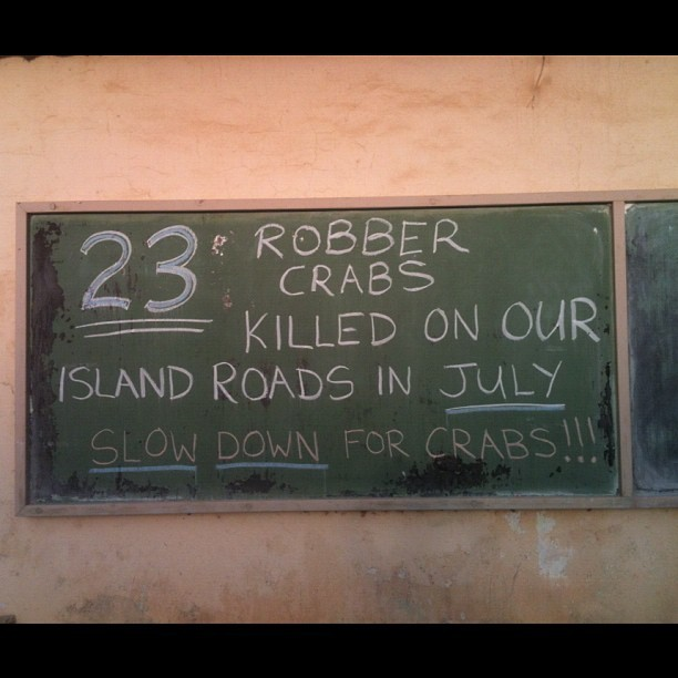 You don't mess with robber crabs on Christmas Island (Pris avec Instagram à Flying Fish Beach)