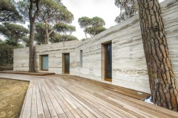 Pinewood of Marina by Massimo Fiorido Associati