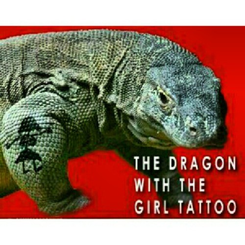 #thedragonwiththegirltattoo #tattoo (Taken with Instagram)